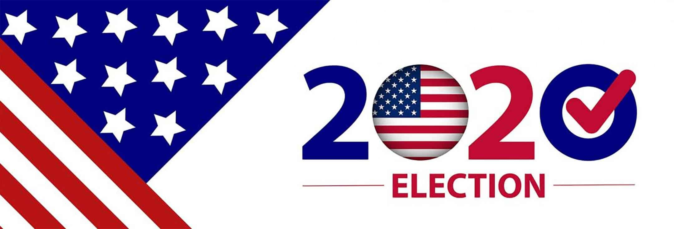 sub-2020-election
